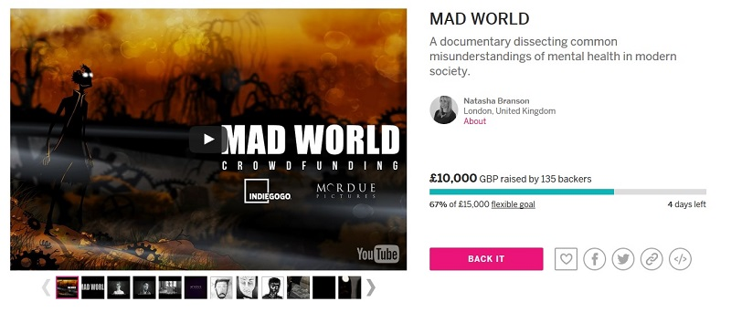 crowdfunding campaign review mad world